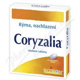 Coryzalia drg. 40